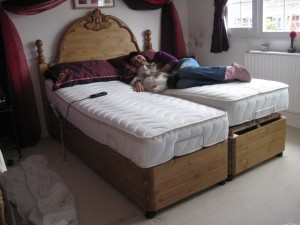 New Forest Adjustable Bed Headboard